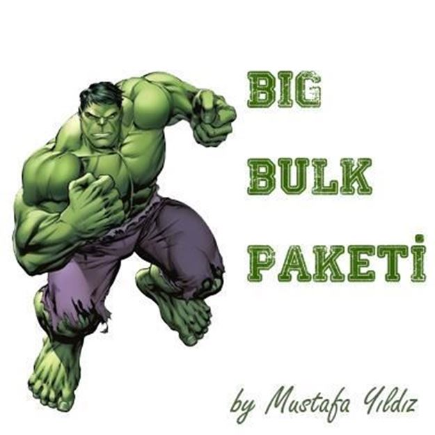 Picture of My Hulk-Big Bulk Paketi
